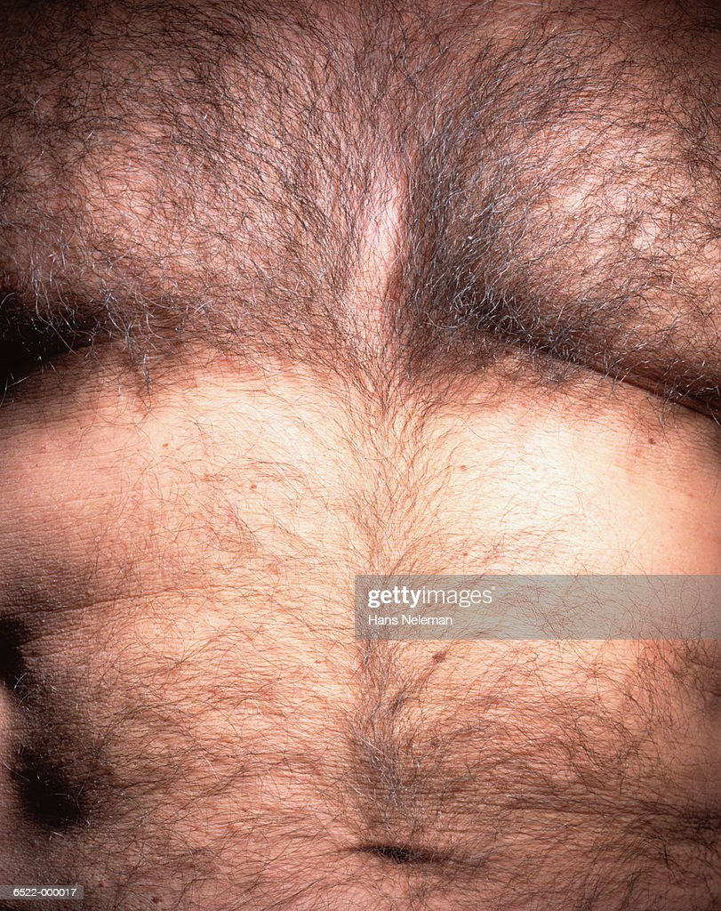 Hairy Chest : Stock Photo