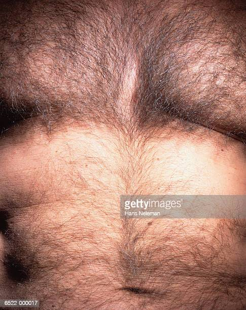 hairy chest - hairy man chest stock photos and pictures