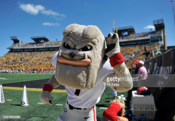 Hairy Dawg the Georgia Bulldogs mascot entertains during a game Missouri Tigers in the third quarter at Memorial Stadium on September 22 2018 in...