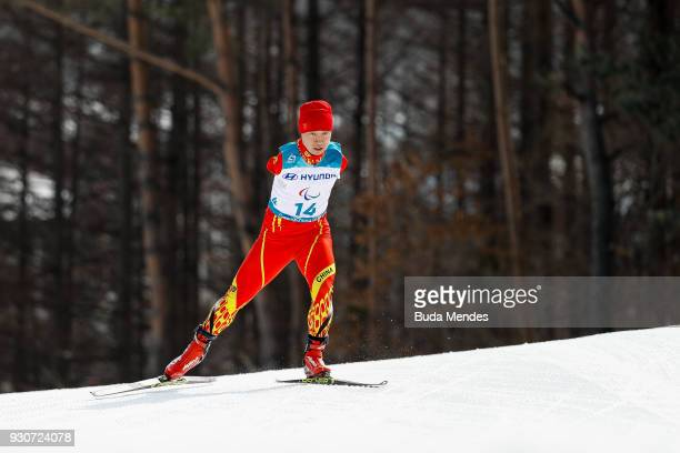 Haitao Du of China competes in the Men's Cross Country 20km Free Standing event at Alpensia Biathlon Centre during day two of the PyeongChang 2018...