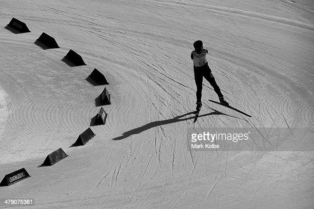 Haitao Du of China ompetes in the Men's Cross Country 10km Free Standing on day nine of the Sochi 2014 Paralympic Winter Games at Laura Crosscountry...