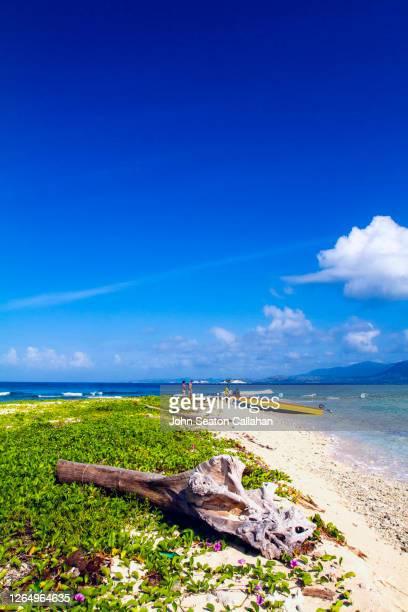 haiti, group of people on an offshore caye - paisajes de haiti fotografías e imágenes de stock