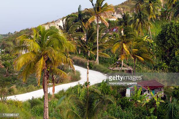 haiti - haiti stock pictures, royalty-free photos & images