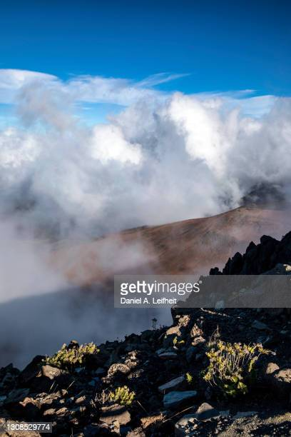 haleakala national park in the clouds on maui, hawaii - category:census-designated_places_in_honolulu_county,_hawaii stock pictures, royalty-free photos & images