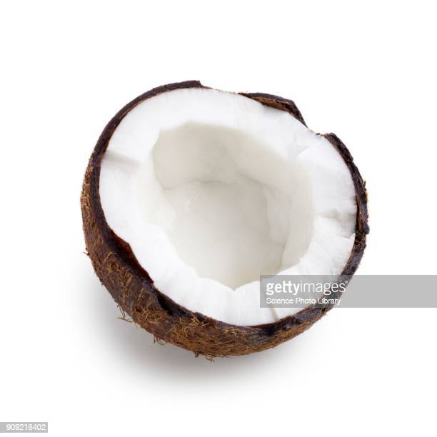 half a coconut - coconut stock pictures, royalty-free photos & images