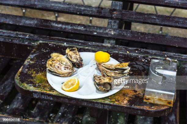 half a dozen oysters on a plastic plate - plastic plate stock pictures, royalty-free photos & images