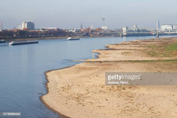 Half loaded cargo ships pass banks and the low water in the River Rhine on November 14 2018 in Cologne Germany Summer heat wave in Germany as well...