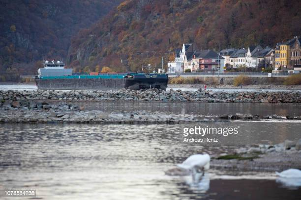 Half loaded cargo ships pass banks and the low water in the River Rhine along the vineyards on November 13 2018 in Lorchhausen Germany Summer heat...