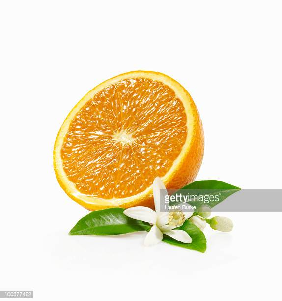 half orange with blossom - orange blossom stock photos and pictures