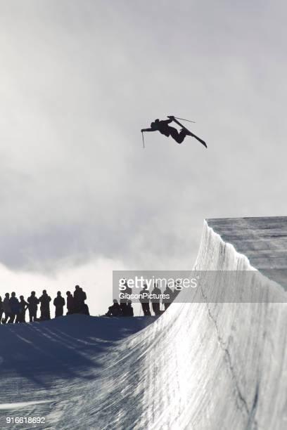 Half Pipe Skier
