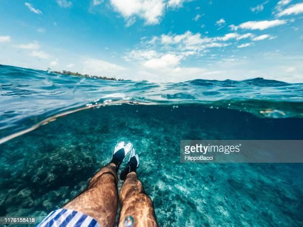 mezza foto subacquea - pov vista delle gambe con pinne in un mare paradisiaco alle maldive - orizzonte sull'acqua foto e immagini stock