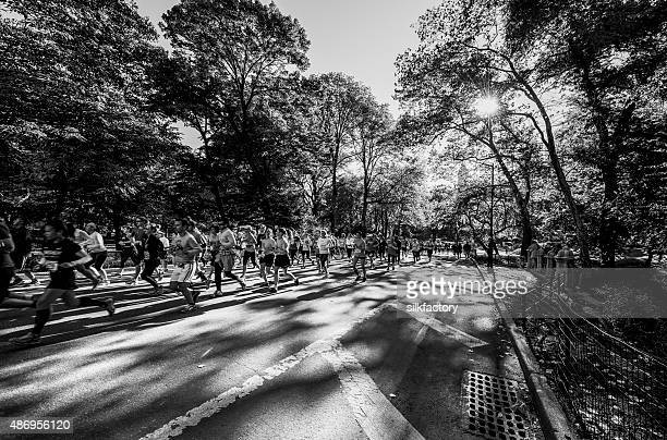 half-marathon in central park in new york city - new york marathon stock pictures, royalty-free photos & images