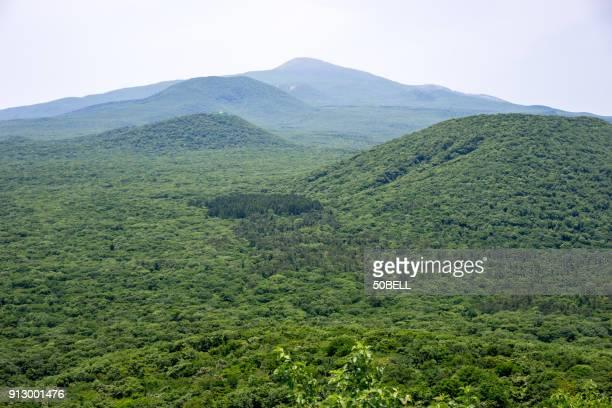 hallasan(halla mountain) and parasitic cones, jeju island, south korea - hallasan stock photos and pictures