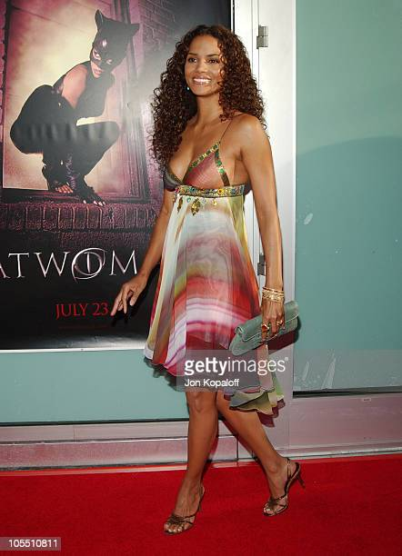 Halle Berry during 'Catwoman' Los Angeles Premiere Arrivals at ArcLight Cinerama Dome in Hollywood California United States