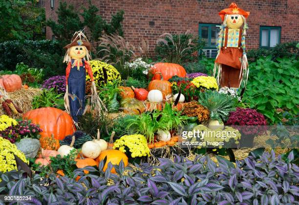 Halloween Decorations Stuyvesant Town NY