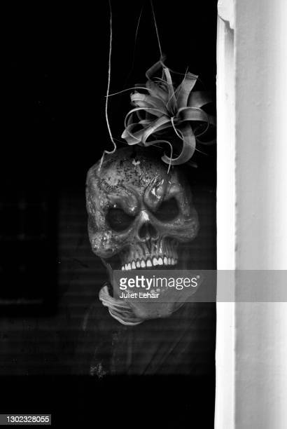 halloween grin. - fascinator stock pictures, royalty-free photos & images