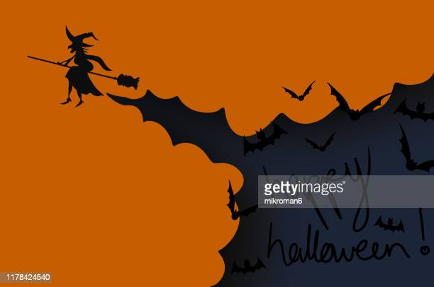 halloween illustration of a witch on  a broom - cartoon halloween stock photos and pictures