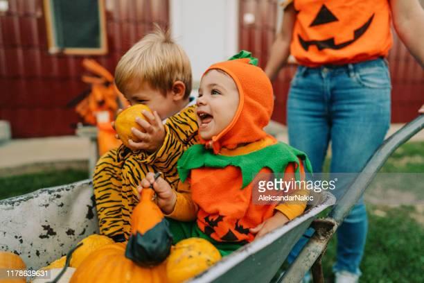 halloween en nuestro patio - disfraz fotografías e imágenes de stock
