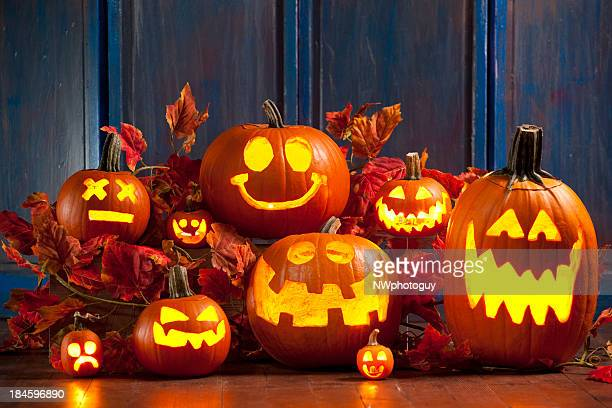halloween jack-o-lantern pumpkins - pumpkin stock pictures, royalty-free photos & images