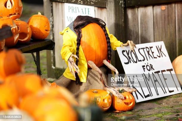 Halloween pumpkin depicting climate activist Greta Thunberg makes up part of a display for the Hebden Bridge Pumpkin Festival on October 22, 2021 in...
