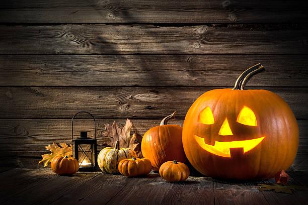 Halloween Pumpkins Fall Pumpkin Holiday Background