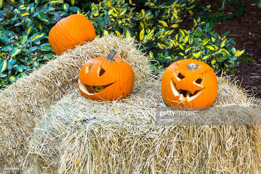 halloween pumpkins with scary expression : Stock Photo