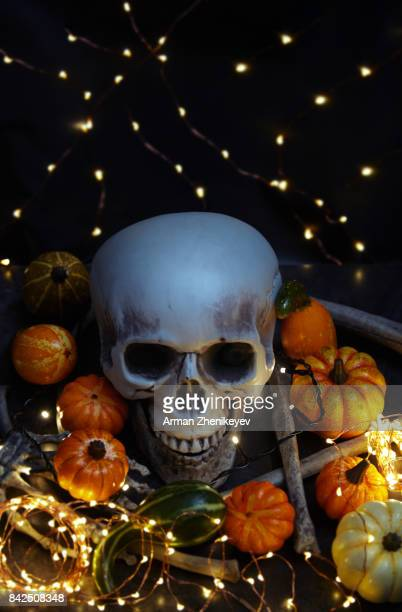 halloween skull and pumpkins with illuminated string lights - ugly pumpkins stock photos and pictures