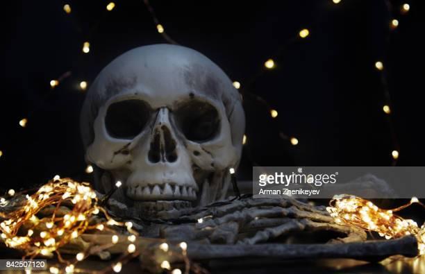 Halloween skull with illuminated string lights