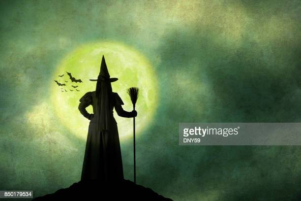 Halloween Witch Holds Her Broom Standing In Front Of Full Moon