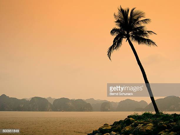 halong bay sunset - bernd schunack photos et images de collection