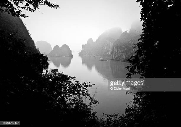 halong bay - vietnam - didier marti stock photos and pictures