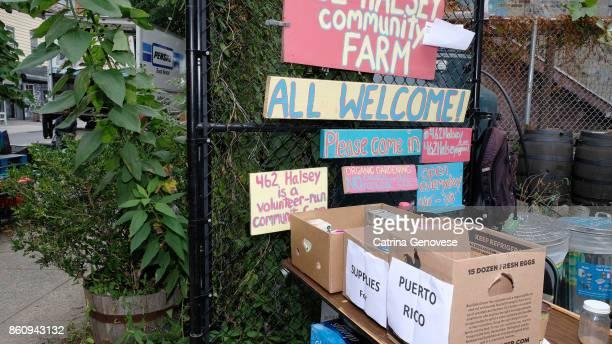 Halsey Urban Community Garden