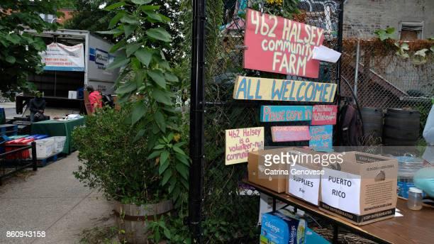 halsey community garden bedstuvesant neighborhood brooklyn