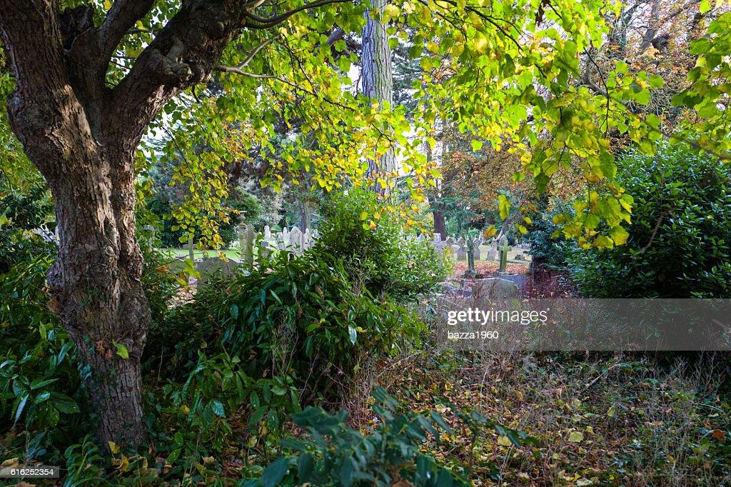 Halstead Cemetery. : Foto de stock