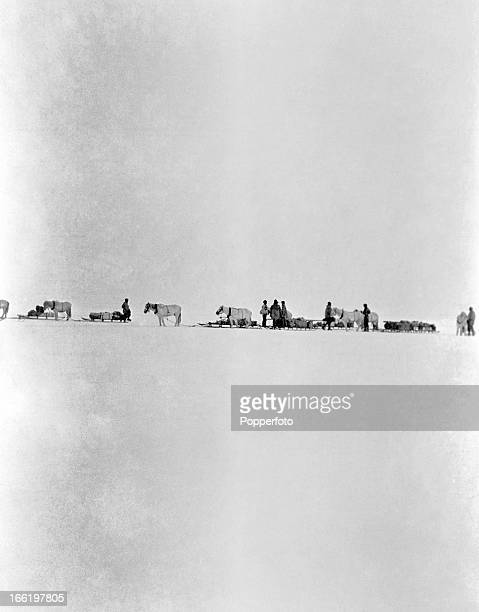 A halt on the march with ponies and sledges taken during the last tragic voyage to Antarctica by Captain Robert Falcon Scott and his crew among them...