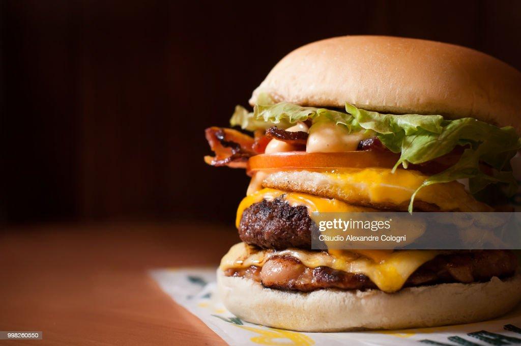 Hamburger Gourmet : Stock Photo