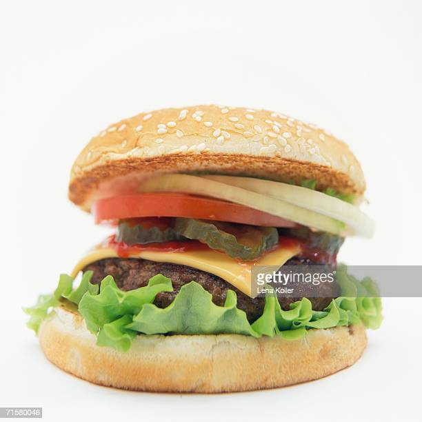 A hamburger on a white background.