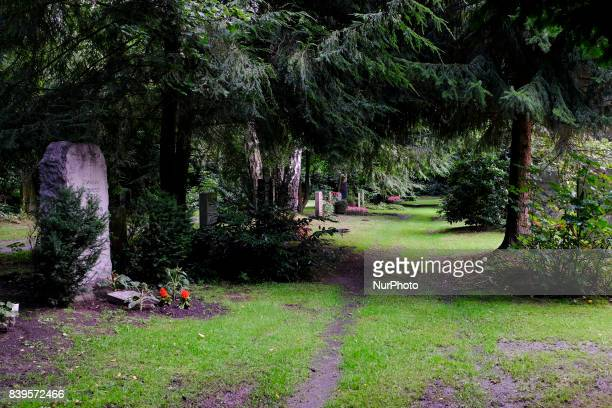 Hamburg's Cemetery Ohlsdorf is the largest rural cemetery in the world The cemetery has an area of 391 It is not only used as a cemetery but also as...