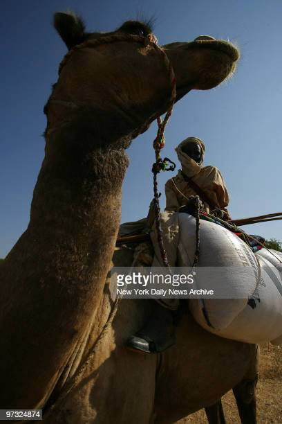 Hamet Hussain a suspected Janjaweed rides his camel a short distance from a recently burned village near Kerfi Chad The Janjaweed who have commited...