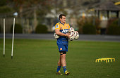 hamilton new zealand michael allardice during