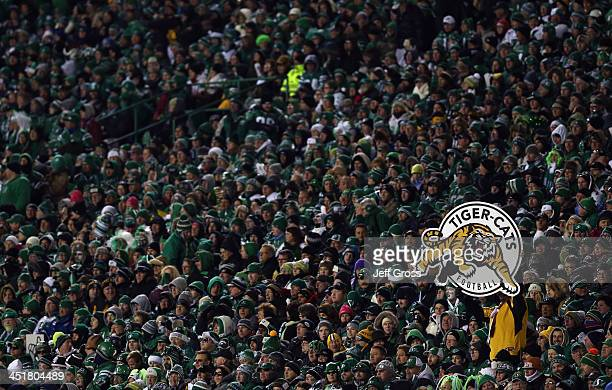 Hamilton Tiger-Cats fan celebrates after a field goal in the first quarter against the Saskatchewan Roughriders during the 101st Grey Cup...