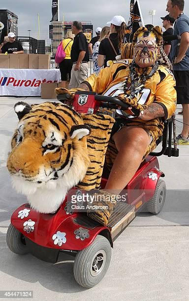 Hamilton Tiger-cats fan gets ready to watch the CFL football game between the Toronto Argonauts and Hamilton Tiger-cats at Tim Hortons Field on...