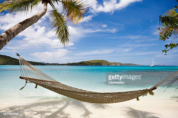 hammock between palm trees on untouched beach in the Caribbean