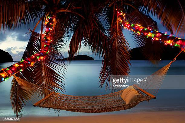 hammock between palm trees with Christmas lights at the beach
