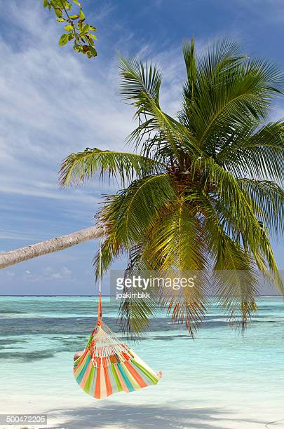 Hammock chair hanging on palm tree on the beach