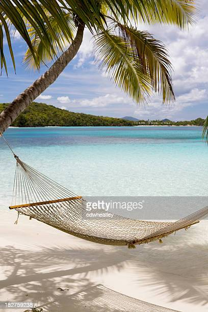 Hammock hung on palm trees on a Caribbean beach
