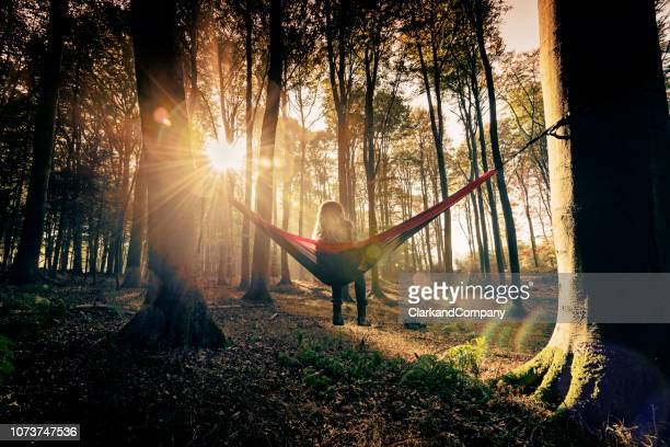 hammock in the woods - woodland stock pictures, royalty-free photos & images