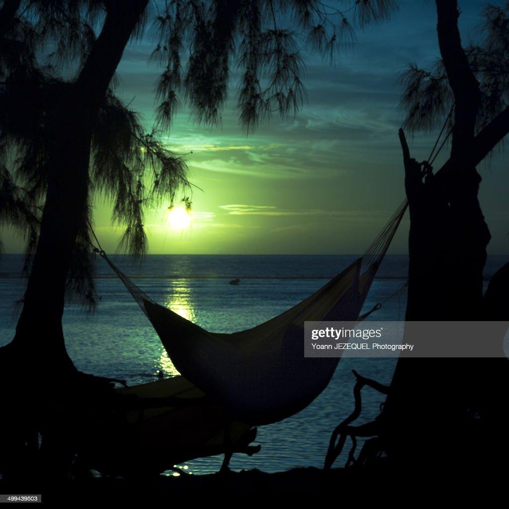 Hammock on a beach : Photo