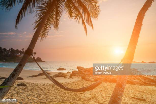 Hammock on palm trees on the beach at sunset