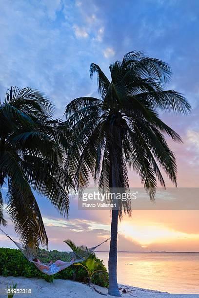 Hammock On Rum Point Beach, Grand Cayman